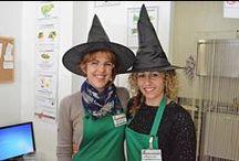 Halloween 2015: Streghette negli spacci / Festeggiando Halloween tra frutta, verdura e... streghette.