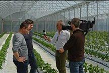 """Ciak...si gira per TRC / Registrando per """"A cielo aperto"""", la rubrica televisiva di agricoltura e alimentazione di TRC."""