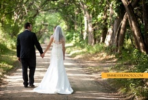 Mount Harmon Weddings / All weddings were held at Mount Harmon Plantation site. Most photographs taken by professional photographers. Contact for photographers available.
