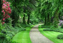 Jardin / Jardin / by Rosa Carballo Hermida