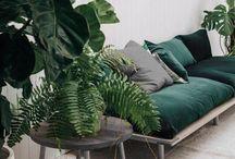 lounge room /