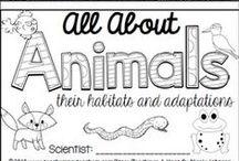Og andre dyr