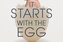 Æg / alle slags