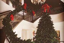christmas dream / ho ho ho.