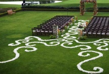 Wedding Ceremony / Unique ideas for adorning the wedding aisle.