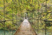 Simple Bridges