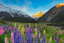colour | alpine scene