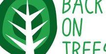 Back on Trees - my blog / Zde najdete články z mého blogu..