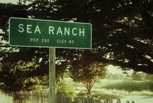 The Sea Ranch / While SMA serves clients all over California, our home base is The Sea Ranch, a small community on the Sonoma Coast.