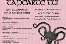 Tapearte Tui 2013