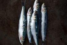 fish & sea food.