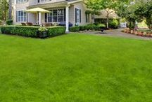 Midwest Lawn Care