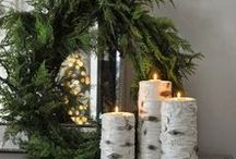 `Tis the Season / The holidays are here! Find the most fabulous flowers of the season at CalyxFlowers.com.
