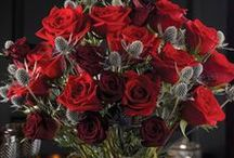 Valentine's Day / Share your love with the gift of flowers. Unexpected designs, perfect for your Valentine.