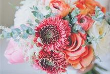 Bouquets / The hunt for the perfect bouquet.