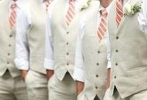 Suit & Tie / Tip top groom apparel