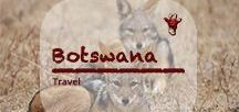 Botswana Travel | Safari / Okavango, Chobe, Kgalagadi, Nxai Pan, Magadi Pans, Savuti and Tuli Block - a wealth of nature reserves and wildlife to discover in beautiful Botswana in Southern Africa. Still a peaceful place, never caught in any conflicts like its neighboring countries. #botswana #safari #africa
