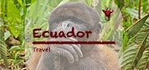 Ecuador Travel | Urlaub / Rain forest (Selva Viva), sandy beaches, spectacular Andes with intimidating active volcanoes. A peaceful country with a surprisingly well-maintained road network and an extensive public transport system. Choice for many expats from western countries. #ecuador #selvaviva #quito