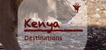 Kenya Destinations | Kenia Urlaub / They say it's the cradle of humanity. The pictures let the keen tourist believe in the proud Masai, abundant wildlife to be seen in the famous national parks of Kenya and unspoiled beaches along the east coast. Droughts, corruption and political unrest grip Kenya over the last decades. The uncontrolled increase of population leads to filth and pollution. An ambivalent country with a lot of untapped potential.