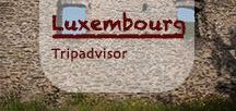 Luxembourg Tripadvisor | Luxemburg Urlaub / A little gem in the middle of the European Union with plenty of nature reserves overgrown by beautiful forests and parted by lakes and rivers. Ancient towns harbor the history of Luxembourg between medieval walls. Luxembourg is more than a country to zip through from north to southern Europe.