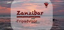 Zanzibar Tripadvisor | Sansibar Urlaub / They call Zanzibar the 'spice Island'. It could also be called the 'sunset island' or the 'island of the most beautiful beaches' but that wouldn't be unique as other islands may have this tag, too. Also the 'island of the most crazy taxi drivers' would fit well! One thing is unarguable though: Zanzibar offers delightful places, food and accommodation at affordable prices.