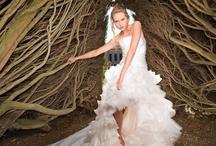 """"""" 2013 Delsa Couture collection """" photos"""