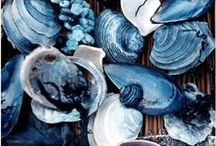 Colors: Sapphire