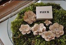 Bouquets et Fleurs... sans fleurs / Flowerless flowers and bouquets