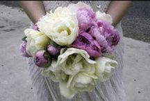 Flowers  / Flowers for every occasion or for no occasion at all. / by Finola Gallagher-Taaffe