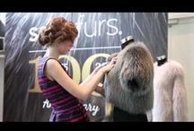 FUR - VIDEOS / Margit Pels is a furier in Copenhagen. We have made this board to show you different videos of fur.