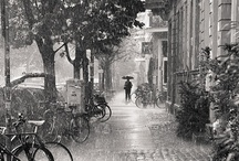 In the rain / - Anyone who says sunshine brings happiness, has never danced in the rain - Unknown