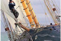 Sailing / by Kathy Steenbuck