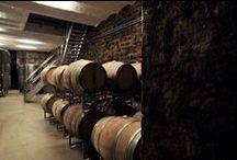 Komponierbar... / Wir verstehen Wein als Kunst und den Keller als Raum der Komposition. Deshalb setzen wir auf modernste Kellertechnik. Weissweine reifen in Edelstahltanks, Rotweine ruhen in Holzfässern.