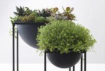 Inspiratie :: Planten