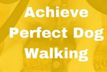 Dog Walking / Learn simple steps to perfect dog walking! Soon, you'll be able to walk a dog with ease!