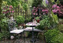 Jardin / Garden