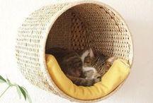 Arbres à chat / Cat trees / Idées d'abres à chats / inspiration for cat trees