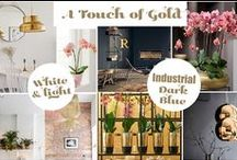 Interior: A touch of gold / Gold is back! it's a nice accent colour in your interior and pairs well with light & white or dark and even industiral interiors.  | Bloomifique interior styling & home deco
