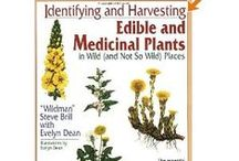 Survival - Wild Edible and or Medicinal Plants / by Verena Kretschmer