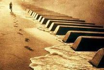 Music / Music, music & more music