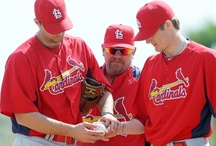 St. Louis Cardinals / The best baseball team in the world! / by Brett Gibbons
