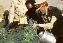 H.I.M Imperial Majesty_Haile Selassie I / H.I.M Imperial Majesty_Haile Selassie I Images, speeches, livicated to His Imperial Majesty, Ethiopia, Ithiopia, Axum, Empress Menen, Jah Liveth, Amharic, Conquering Lion of the Tribe of Judah #Selassie