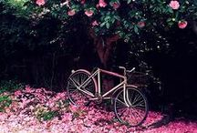 eu ♥ pedalar / A gente <3 pedalar. E quem não ama a magrela, né?