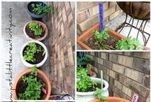 Spring in the Garden / Spring Planting, Spring Decorating, and Spring Landscape Decor Ideas for the Imaginative Gardener!