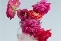 I ♥♥ plants, flowers, leaves. still life / in art, craft, walls, vases, nature,book covers, everywhere!