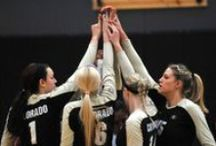 Volleyball / Everything you need to know about your current Lady Buffs Volleyball team!  / by Colorado Buffaloes