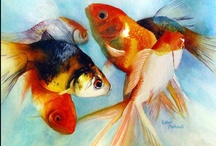 MoKA: Museum of Kingyo Art / everything about goldfish!................... sometimes koi.................. occasionally fish................in very rare case anything looks alike................. we open 24/7