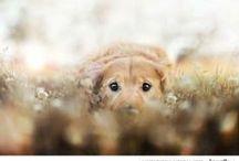 beautiful and cute