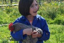 Junior Farmers / Photographs taken during the Junior Farmers activities at Cwmcrwth Farm