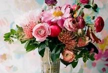 petals // flowers
